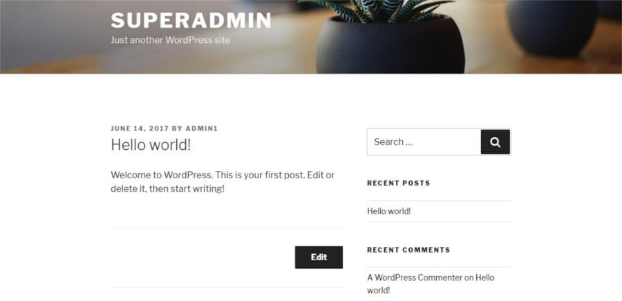 WordPress dummy content with 'Hello World' placeholder